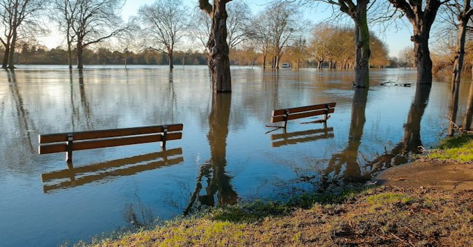 Flooded park area